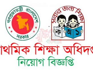 Primary Education Directorate Job Circular Online