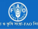 Food and Agriculture Organization FAO NGO Job Circular Online
