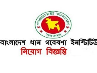Bangladesh Rice Research Institute BRRI Job Circular Online