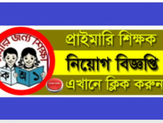 Government Primary School Job Circular Online